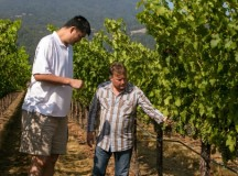 Yao Ming used to play in NBA…now he makes wine